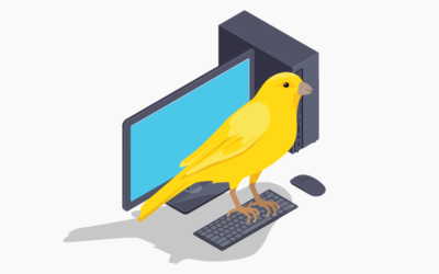 Yardsticks and Canaries: Enabling Effective ICT Decision Making